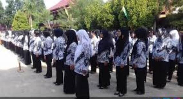 Info Terbaru !! Moratorium PNS Akan Dicabut Pada Tahun 2018, Kabar Gembira Untuk Guru !
