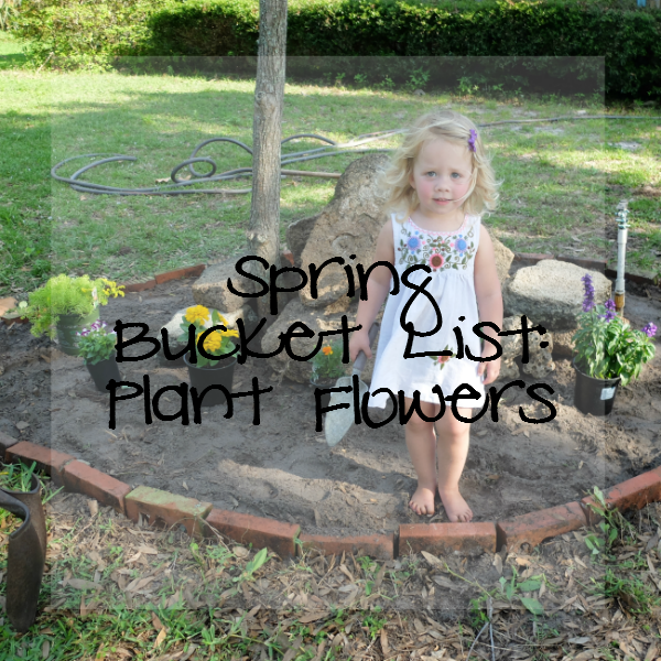 Sweet Turtle Soup: Spring Bucket List - Plant Flowers