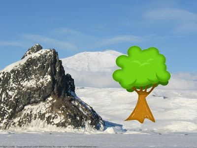 Fossil trees in Antarctica fit Genesis Flood model for a young earth
