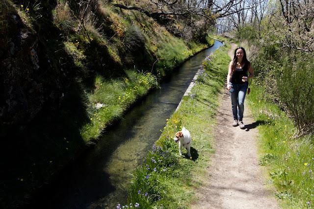 Lena y Amy caminando al lado del canal