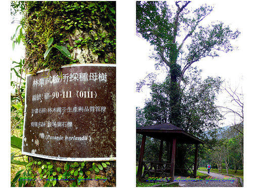 福山植物園