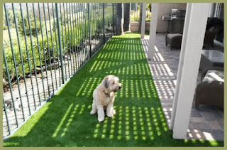 materials used in the production of fake grass are safe enough for dogs yet dogs artificial grassthe many things dogs of different sizes