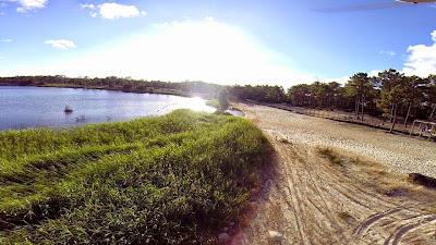 Resultado de imagem para Estação da Biodiversidade divulga riqueza biológica da praia do Pedrógão