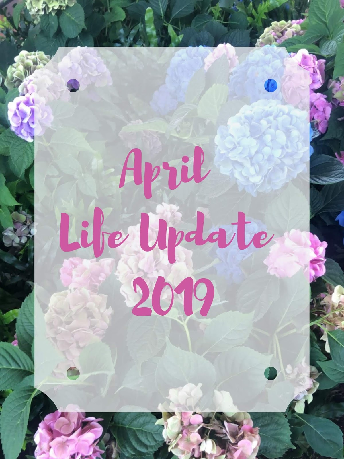 Stephanie Kamp Blog: April Life Update 2019
