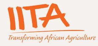 iita-nigeria-address-phone-email-contact