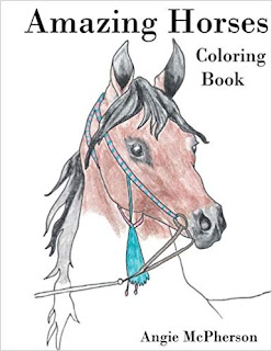 Amazing Horses Coloring Book