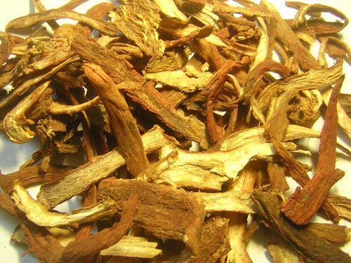 Rễ TRI MẪU - Anemarrhena aspheloides - Nguyên liệu làm thuốc Chữa Ho Hen