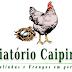 Criatório Caipirão - Galinhas e frangos em geral
