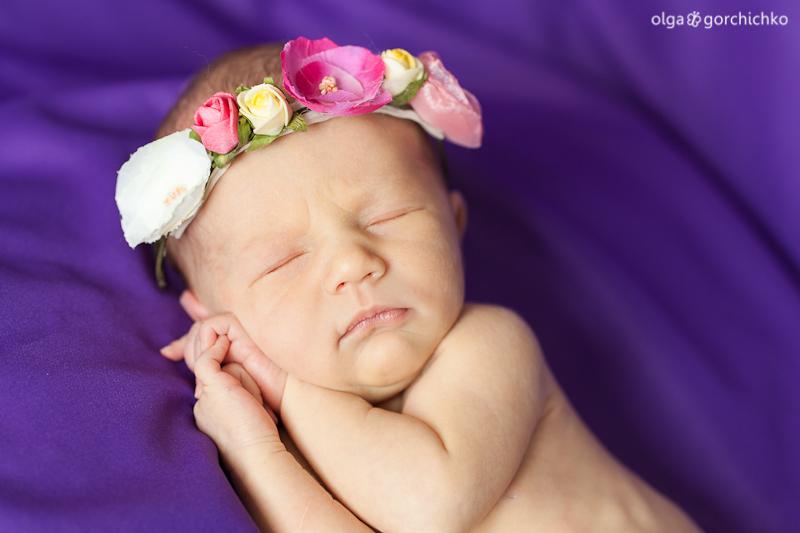 Фотограф новорожденных, фотосессия новорожденных Гродно