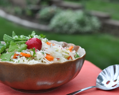 Jicama Slaw, another unusual coleslaw ♥ AVeggieVenture.com