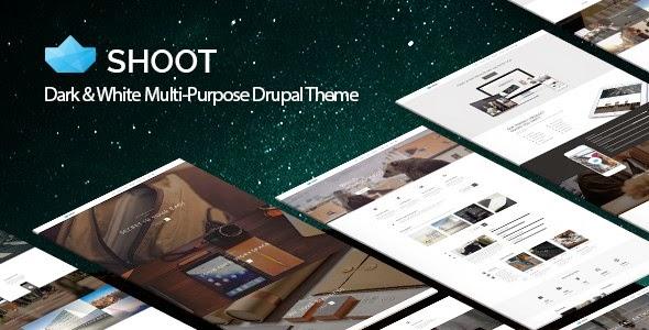 best drupal ecommerce theme