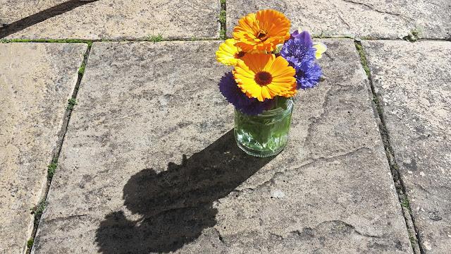 Project 366 2016 - day 183 Grandma's flowers // 76sunflowers