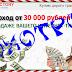 [ЛОХОТРОН] Платформа MONEY VICTORY Отзывы, развод. Купля продажа трафика!