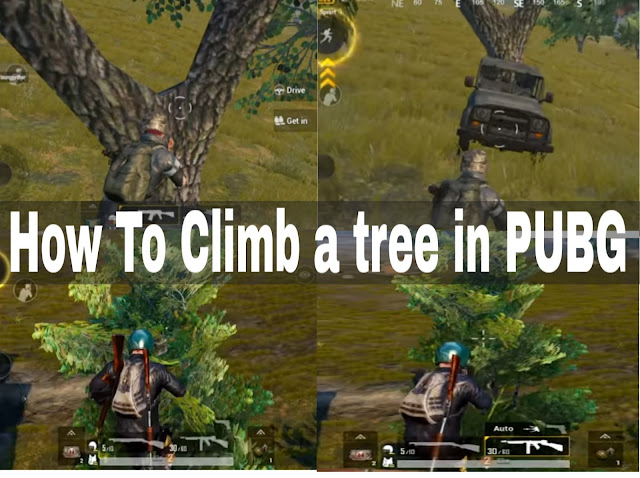 How To Climb a Tree in pubg mobile game