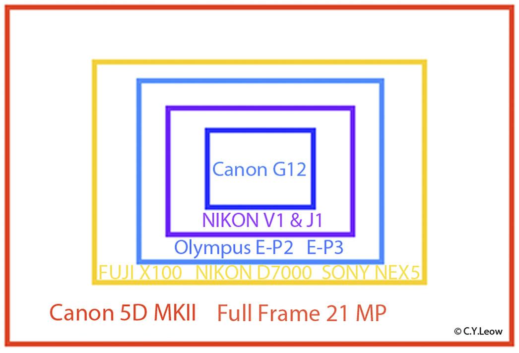 Camera Sensor Size Comparison Chart