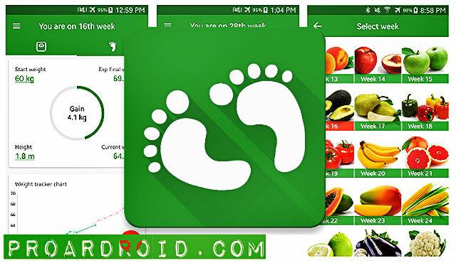 تطبيق Pregnancy Week By Week لمساعد المرأة على متابعة مراحل الحمل بسهولة على للاندرويد logo