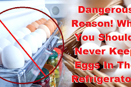 Never Put EGGS in the Refrigerator! Check Here Why!