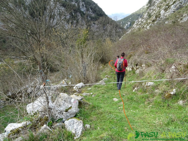 Ruta a la Pica de Peñamellera: Camino a la senda fluvial del Cares en Mier