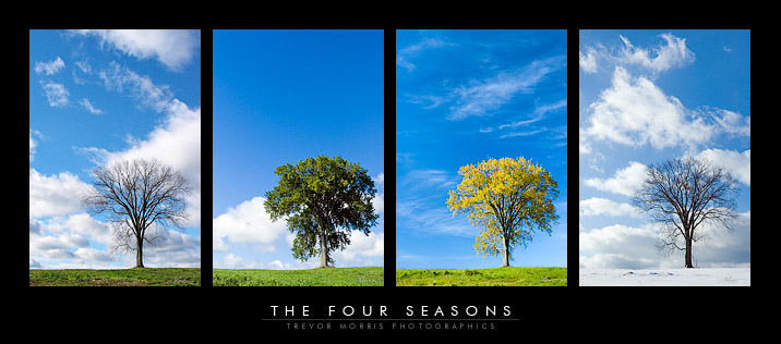 4th Grade English: The Four Seasons