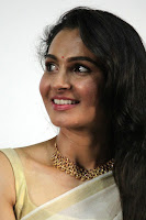 Andrea Jeremiah Gorgeous Picture TollywoodBlog