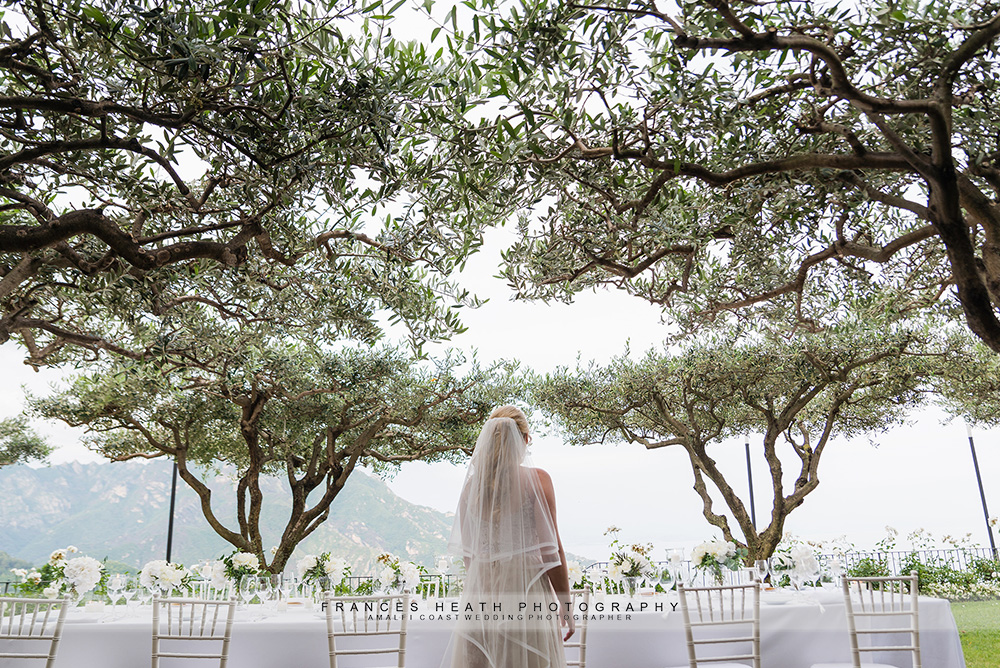 Bride with table under olive trees