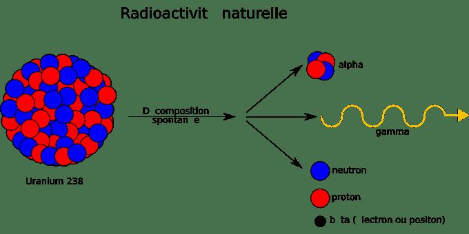 रेडियोसक्रियता | Radioactivity