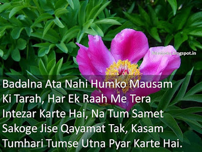 Love Poems in Hindi