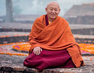 Buddismo ecologismo