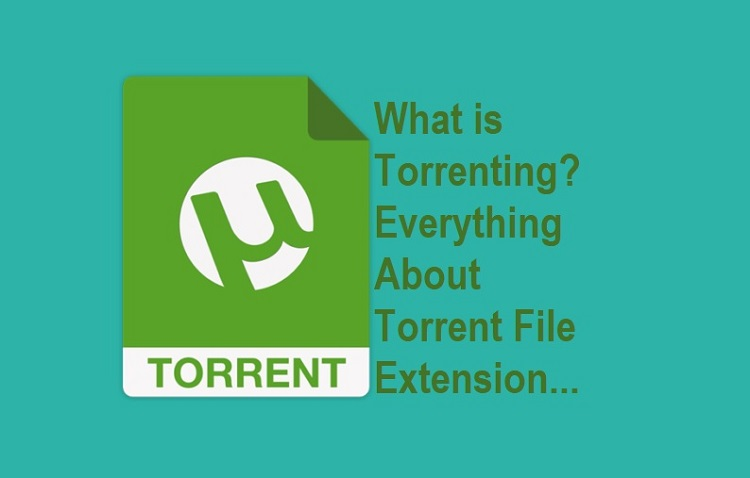 What is Torrenting. Everything About Torrent File Extension...