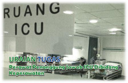 Tugas Perawat Penanggung Jawab ICU Dibidang Keperawatan