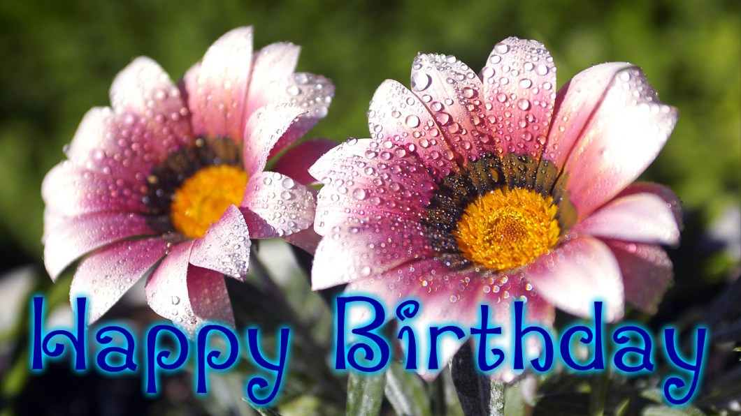 Birthday Flowers Hd Wallpapers Free