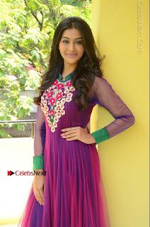 Actress Pooja Jhaveri Latest Stills in Purple Salwar Kameezt at Dwaraka Success Meet  0128.JPG