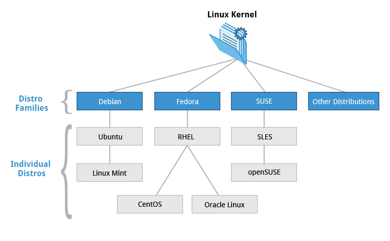 linux chap 1 Chapter 1 gnu/linux tutorials on recent linux kernels, mount (8) with some options can bind part of a file tree somewhere else or can mount filesystem as shared.