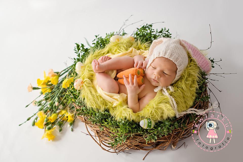 Sesja noworodkowa Pruszcz