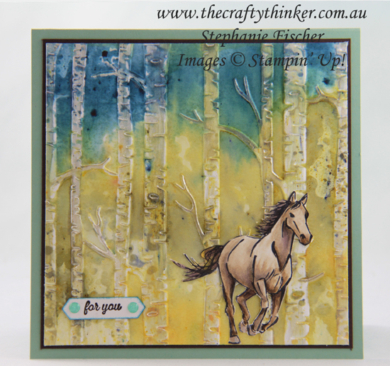 #thecraftythinker #stampinup #cardmaking #embossingtechniques #letitride , Let It Ride, Woodland embossing folder, Brusho Colour Crystals, watercolour background, embossing techniques, Stampin' Up Australia Demonstrator, Stephanie Fischer, Sydney NSW