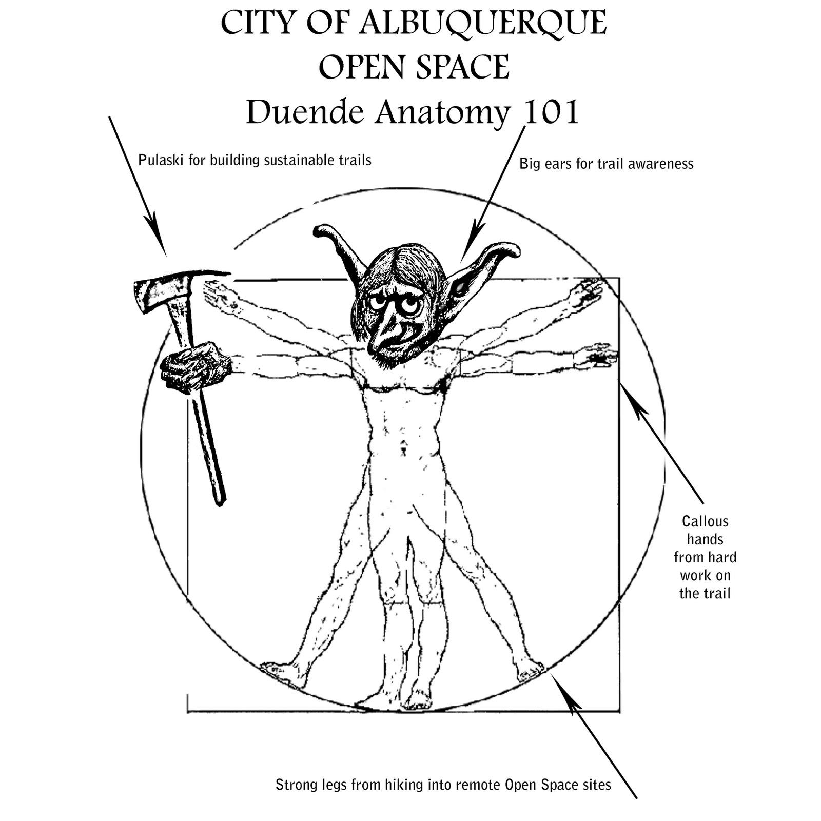 Hair of the Duende: Duende Anatomy