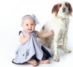 Sahipli Köpeklerin 10 Ricası