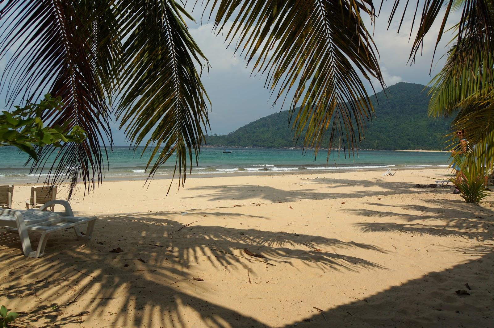 bushman tioman island