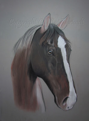 progress of a horse painting commission in pastel by Colette Theriault