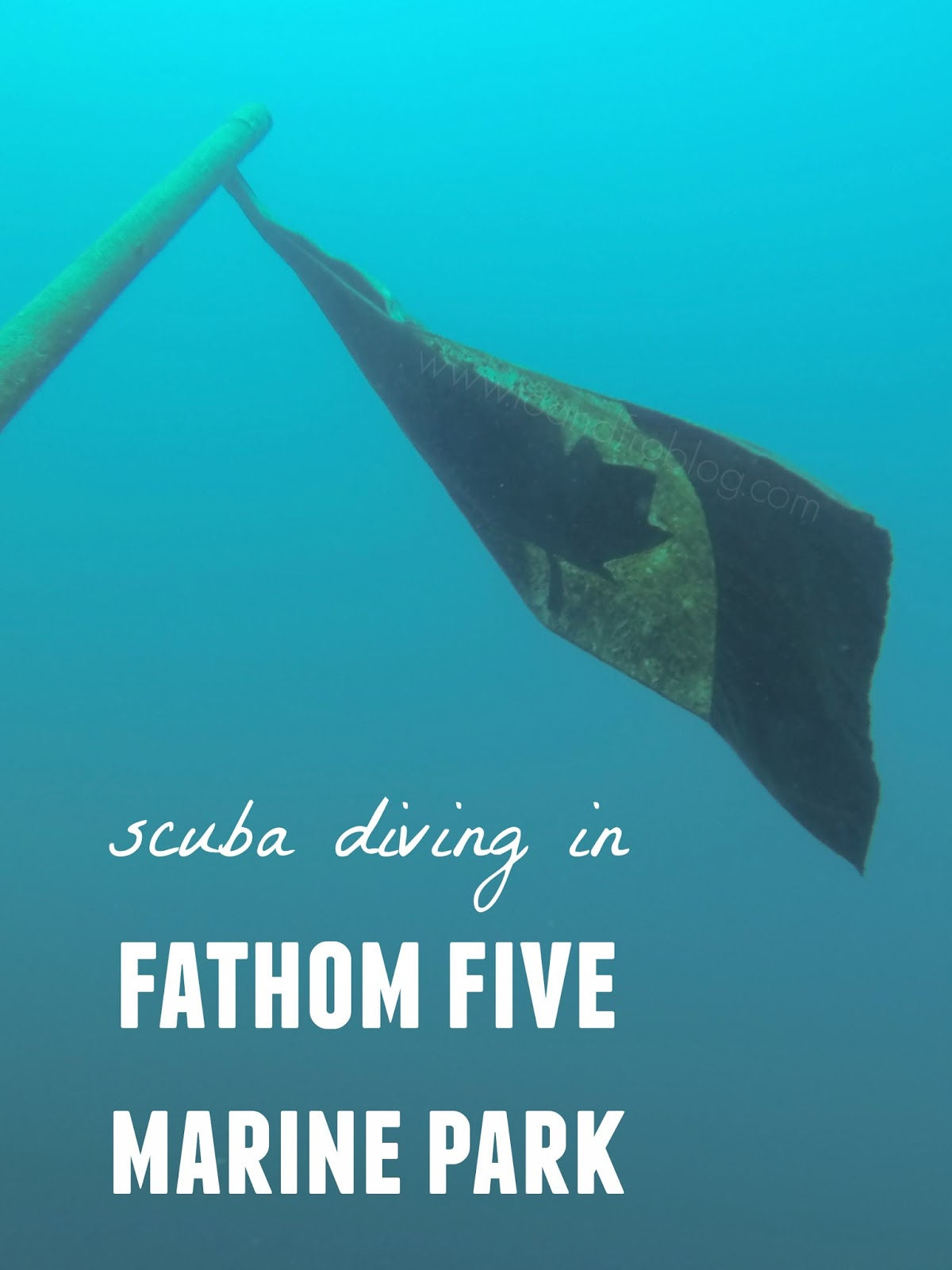 scuba diving; fathom five marine park; tobermory, on