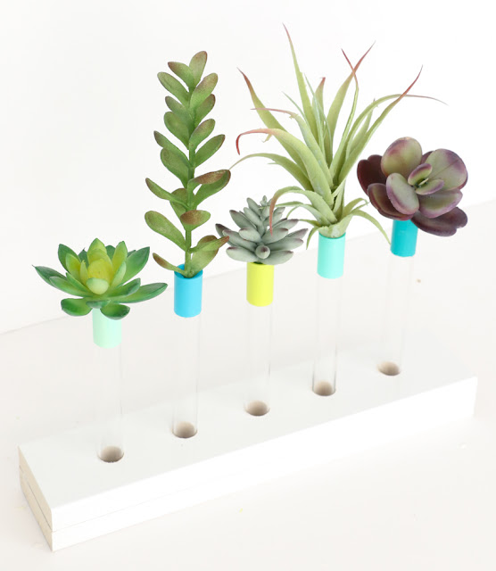 Make your own DIY test tube bud vase with white base - perfect for displaying flowers or faux succulents. - Craft idea - diy vase - bud vase - painted - custom colors