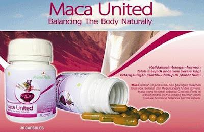 Macca United - HWI asli