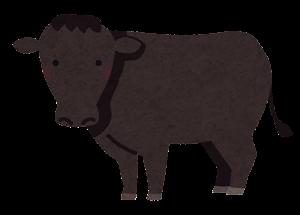 和牛のイラスト(無角和種)