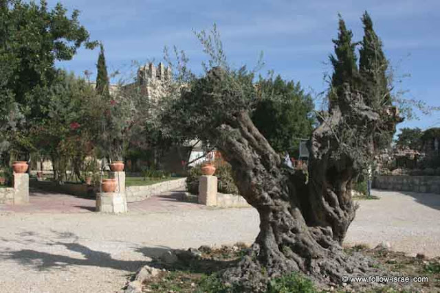 het klooster van Beit Jamal