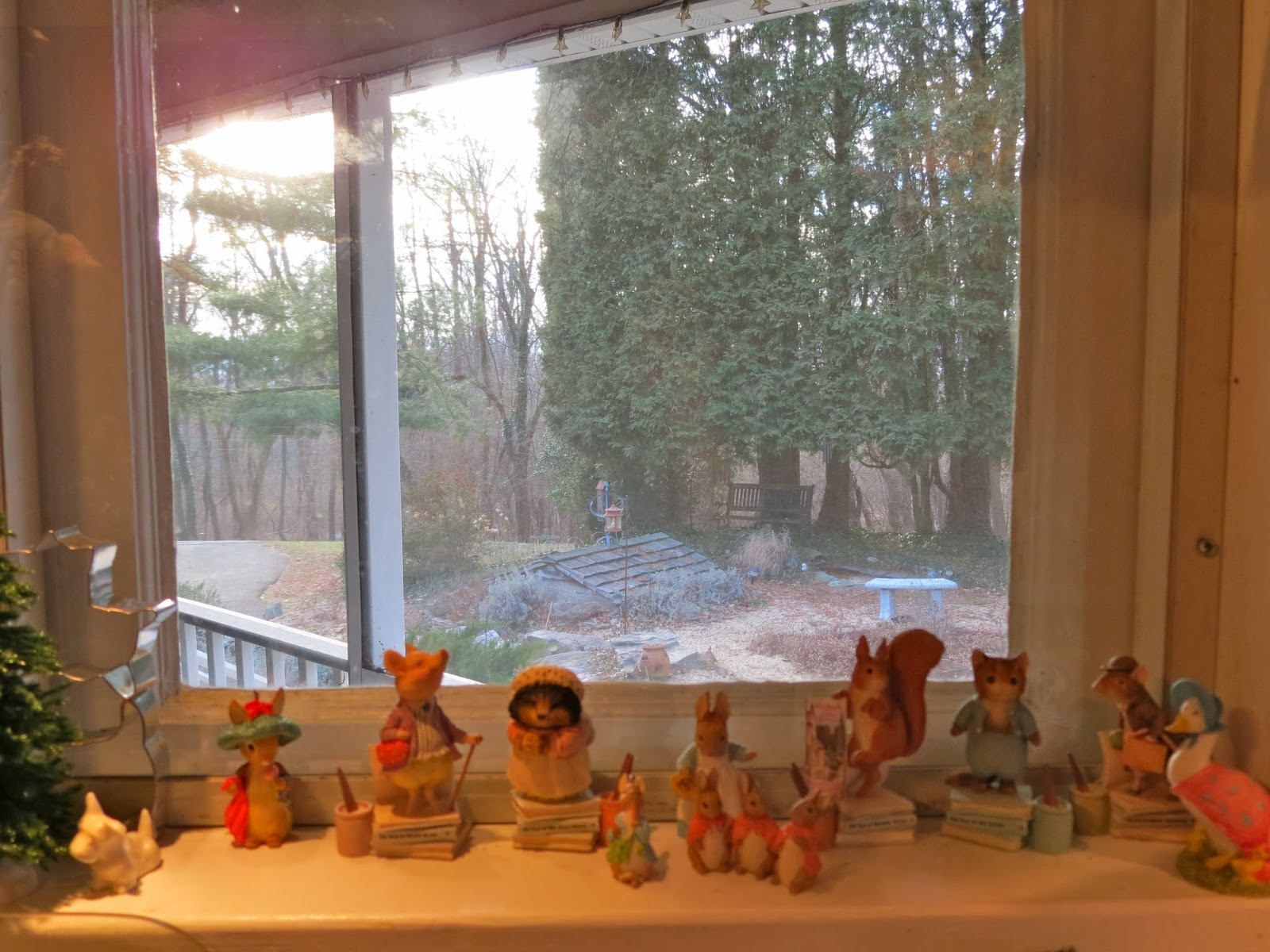 Morning Musings: View Outside My Kitchen Window - January