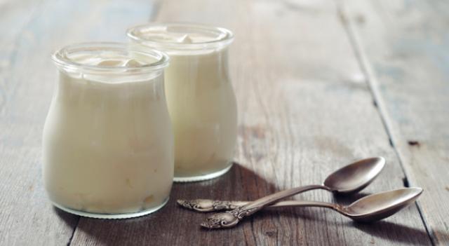 bioteknologi yoghurt