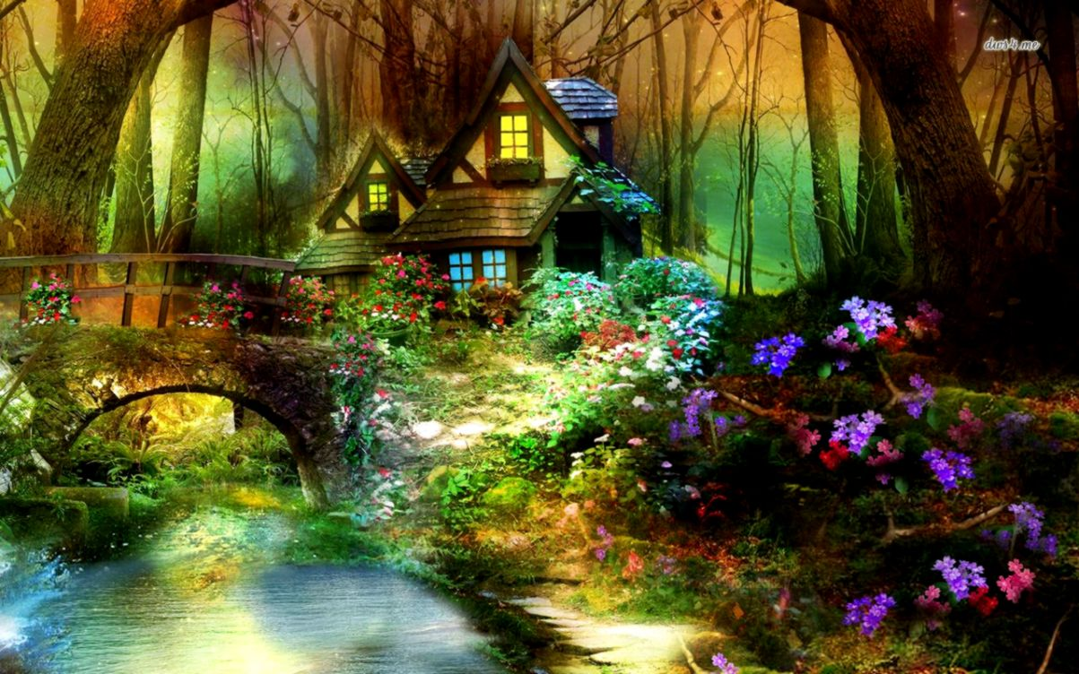 Enchanted Forest Wallpaper Wallpapers New