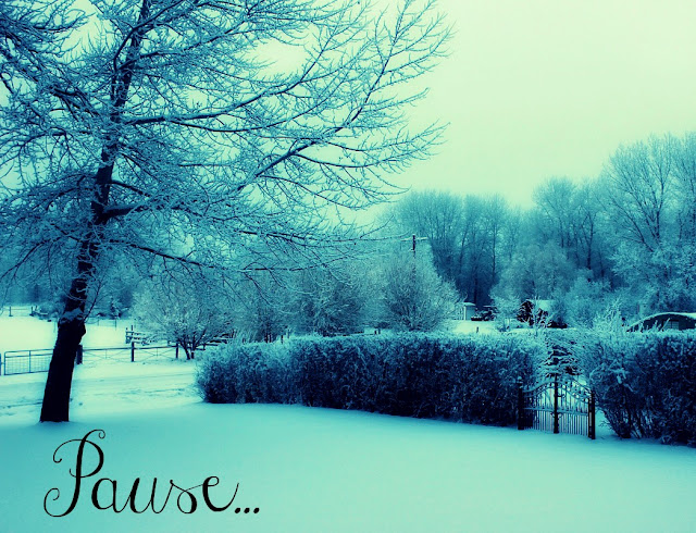 pause, inspiring word, new years resolution, winter photography, snow, http://bec4-beyondthepicketfence.blogspot.com/2016/01/pausein-2016.html