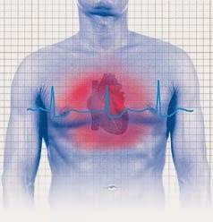 http://www.bhtips.com/2010/11/heart-care.html