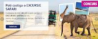 Castiga o excursie cu safari in Kenya, Tanzania si Zanzibar